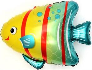 Воздушный шар Яркая рыбка